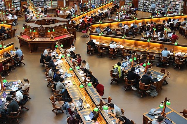 図書館で勉強する大学生